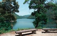愛鳥林エリア湖沿い散策路