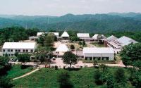 国立山口徳地青少年自然の家
