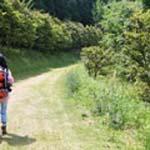 森林セラピー山口散策路