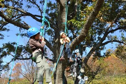 子ども木登り体験