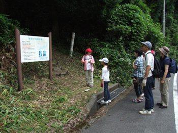 観音の滝遊歩道入り口の案内看板