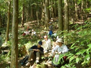 林内にシートを広げて昼食