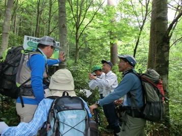 森林官から、滑国有林と滑マツについて説明