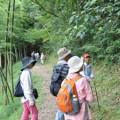 森の案内人養成講座を開講します