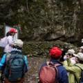 夏のおすすめ森歩き~観音の滝コース~