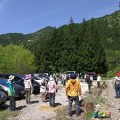 セラピーロード自然観察~小さな草花と森の巨人~(5月6日)