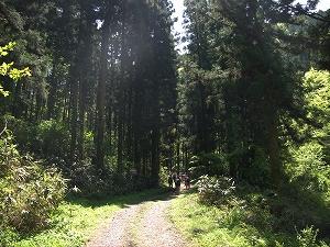 森の役割や効用についてお話をしました