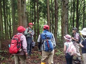 森の案内人のガイドで森歩きを楽しみました