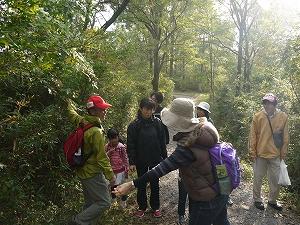 森の案内人と長者ヶ原を歩きます