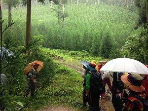 140824手入れの行き届いた森で、森の役割について解説がありました